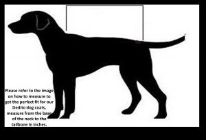 dedito dog coat sizes